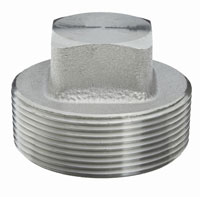3000 lb Stainless Steel Forged Square Plugs | 3000 lb Forged